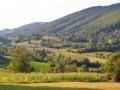 Selo Grivska, Arilje